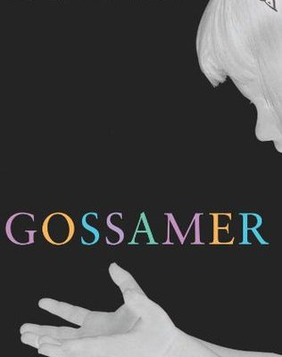 Gossamer, a little review for a little book